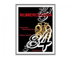 E- book Numerologia