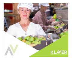 Praca na produkcji w Holandii - BONUS - Gwarancja godzin!! Zwrot za Transport z PL