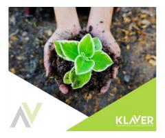 Praca przy pielęgnacji sadzonek w Holandia, Lottum – prace ogrodnicze