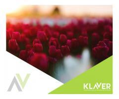 Holandia- Praca przy storczykach –od zaraz