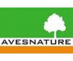 Inwentaryzacje przyrodnicze na terenach przeznaczonych pod inwestycje