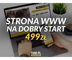 Strona internetowa www na dobry start 499zł